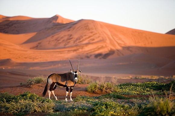 Namibia The colours of Earth