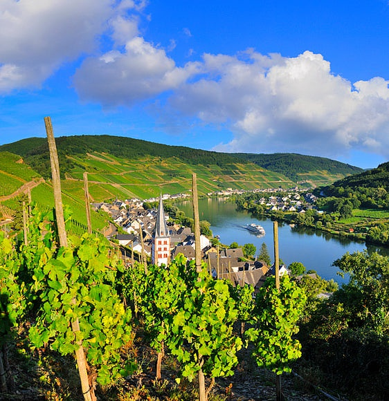Moselle Valley by Luca Da Ros