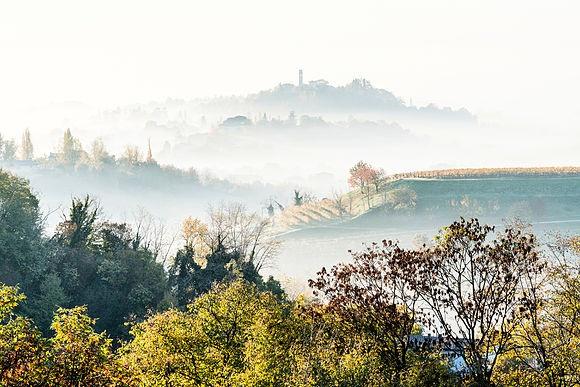 Die Hügel des Prosecco Viele neue Bilder und ein spritziges Buch über den renommierten italienischen Wein